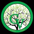 Green Vibes dostava hrane Burgeri