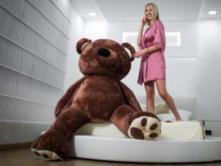 Medved dostava