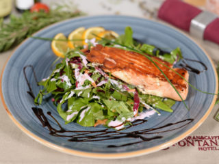 Salmon fillets delivery